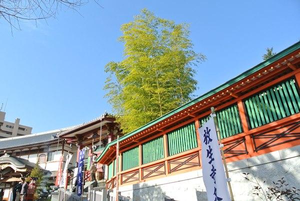 2016年年末の池袋高田馬場新宿その2放生寺から高田馬場