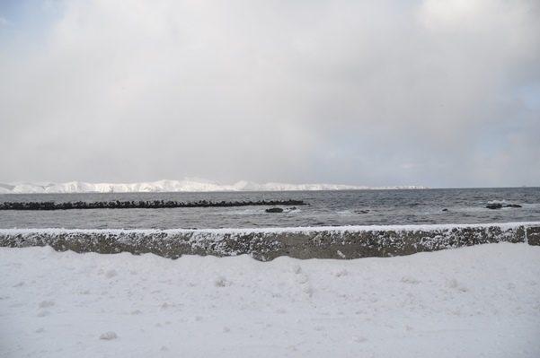2017北海道好きなら冬に行かないとの5泊6日旅 その10冬の礼文島に着いて2017年1月31日